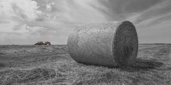 Η αξία της ευρωπαϊκής γεωργικής παραγωγής – Πρώτη η Γαλλία