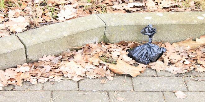 Η μάχη κατά της πλαστικής σακούλας – Εντυπωσιακά αποτελέσματα σε Δανία,Φινλανδία και Ιρλανδία