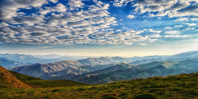 Όλο και περισσότερα είδη φυτών στις κορυφές των ευρωπαϊκών βουνών