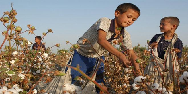 Αύξηση της παιδικής εργασίας – Περισσότερα από 100 εκατ. παιδιά συμμετέχουν σε γεωργικές εργασίες