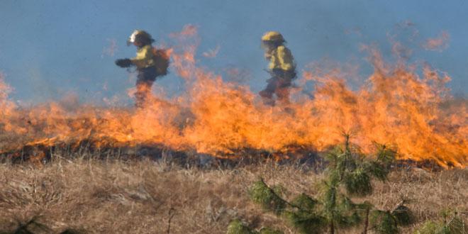 Πολύ υψηλός κίνδυνος πυρκαγιάς σε πολλές περιοχές της χώρας την Παρασκευή