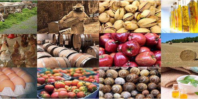 Χρηματοδότηση επιχειρήσεων για επενδύσεις στη μεταποίηση, εμπορία ή και ανάπτυξη γεωργικών προϊόντων – Περιφέρεια Θεσσαλίας