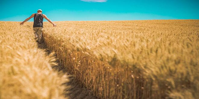 14,2 εκατ. € σε νέους και νεοεισερχόμενους γεωργούς