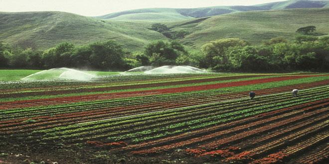 Ευρωκοινοβούλιο: Πράσινο φως στη χρήση αστικών λυμάτων για άρδευση καλλιεργειών