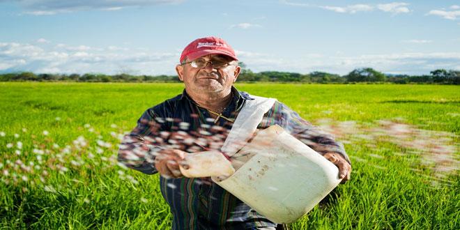 Στη γεωργική παραγωγή και οι συνταξιούχοι – Τι αλλάζει με τις συντάξεις