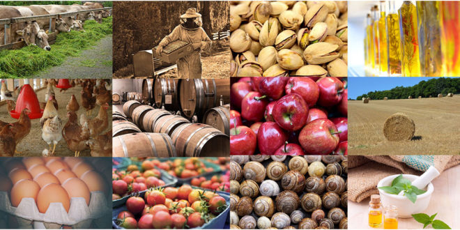 Περιφέρεια Πελοποννήσου: Νέα ευκαιρία για επενδύσεις στη μεταποίηση και εμπορία γεωργικών προϊόντων