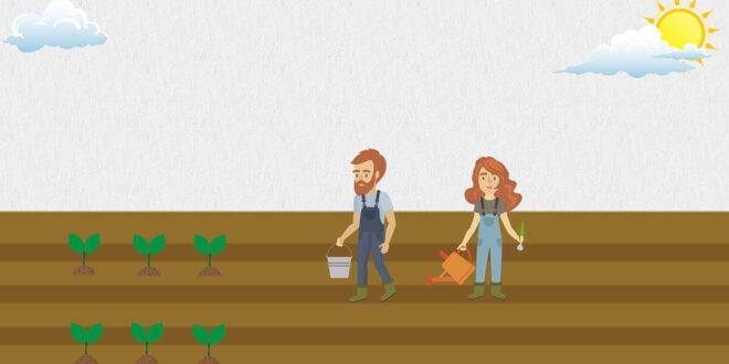 Τα ποσοστά συμμετοχής των γυναικών σε δράσεις του Προγράμματος Αγροτικής Ανάπτυξης