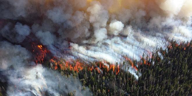 Δασικές πυρκαγιές: 13 αεροσκάφη και 6 ελικόπτερα στον μηχανισμό rescEU