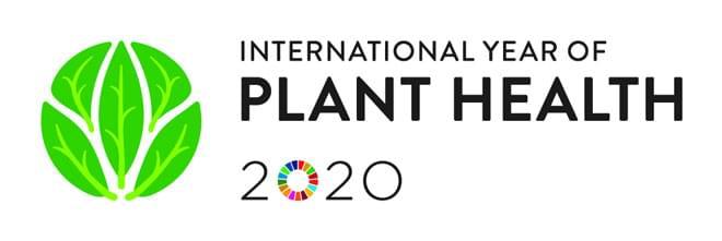 Διεθνές Έτος Υγείας Φυτών: Μια νέα ιστοσελίδα από την EFSA