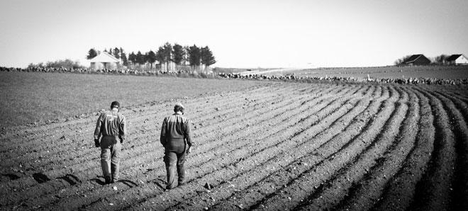 Νέος τρόπος εύρεσης θέσεων εργασίας στον αγροτικό τομέα